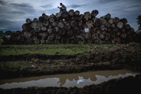 Myanmar: Journalist investigating illegal logging killed - Protection