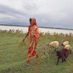 El derecho a saber: la protección del medio ambiente en Bangladesh