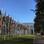 HRC45: Council must act on arbitrary detention