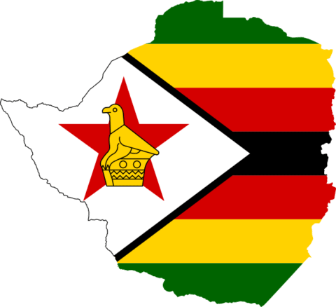 Zimbabwe: Public Health Order must not be misused to restrict freedom of expression - Media