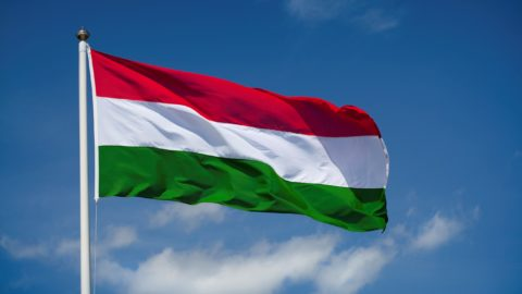 Hungary: End the attacks on the LGBTQI community and the rule of law in the EU - Civic Space