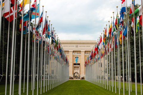 UN: States must embrace free expression to tackle disinformation - Civic Space